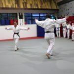 International Judo Center